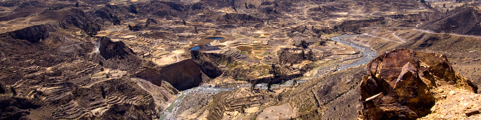 Packages with Colca Canyon