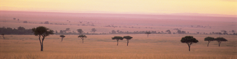 Kenya Trip Planning - Monograms® Vacations
