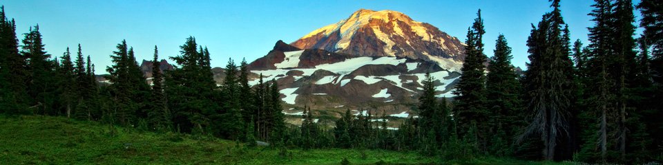 Packages with Mount Rainier National Park