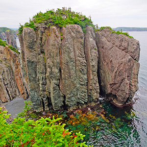 Newfoundland Vacation Package