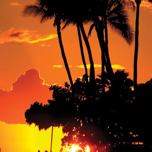 Hawaii Vacation Package